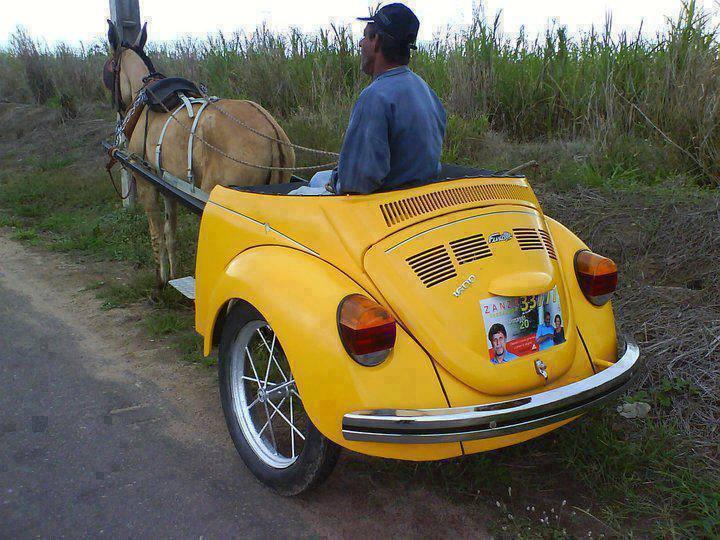 Buggy Cart.jpg