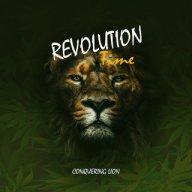 conquering_lion