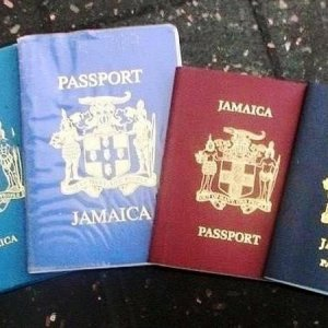 Which passport color house you've had?