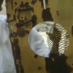 Beenie Man - Blackboard (1996)